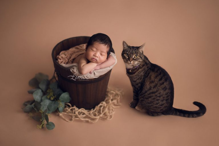 Read more about the article Newborn Photography San Jose – Baby J