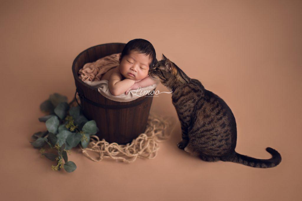San Jose Baby Photography